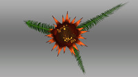 bulbil cycas circinalis 3d model