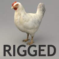 3d model rigged chicken