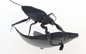 water scorpion c4d