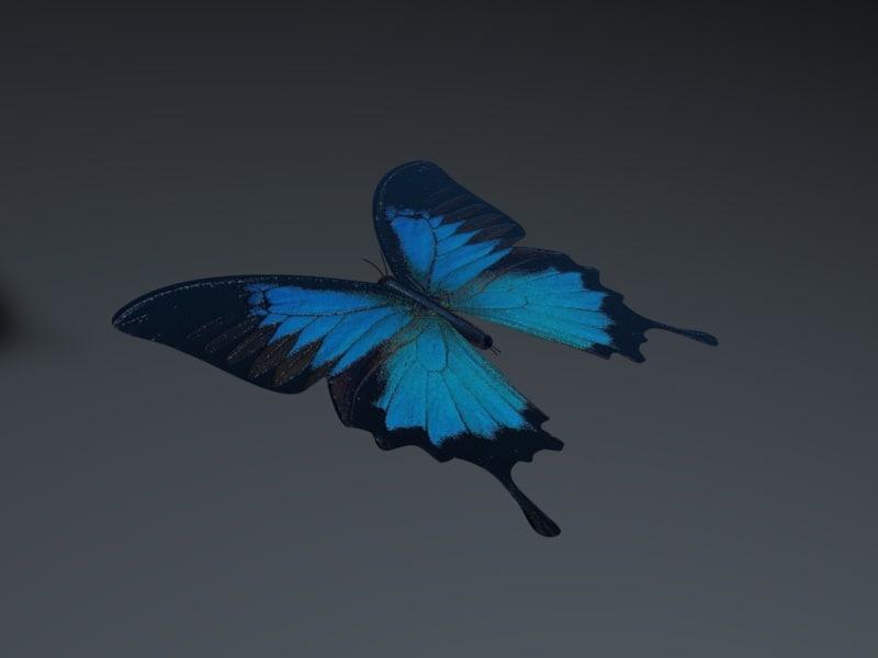 3d blue butterfly model