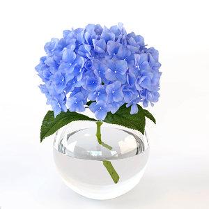 branch hydrangeas glass vase max
