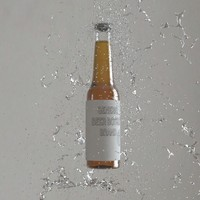 beer bottle 3d max