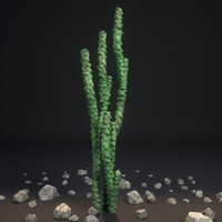 3d model totem pole cactus