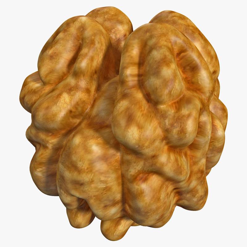 walnut kernel 2 nut 3d model