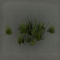 grass pack