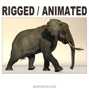 rigged african elephant 3d c4d