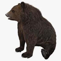 bear pose 3 3d max