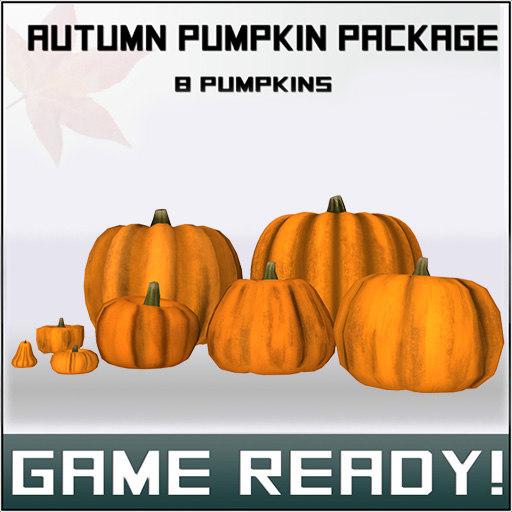 autumn pumpkins package 3d model