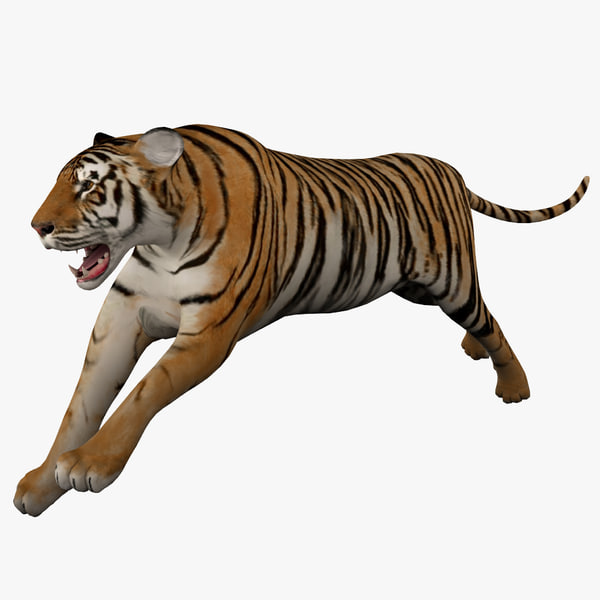3ds max tiger 2 pose