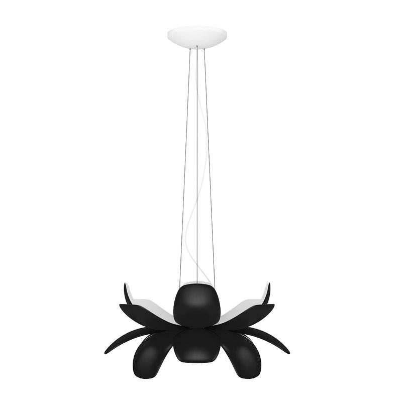 ceiling lamp c max