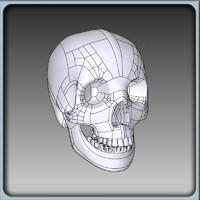 ma igs skull