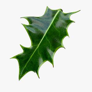 holly leaf max