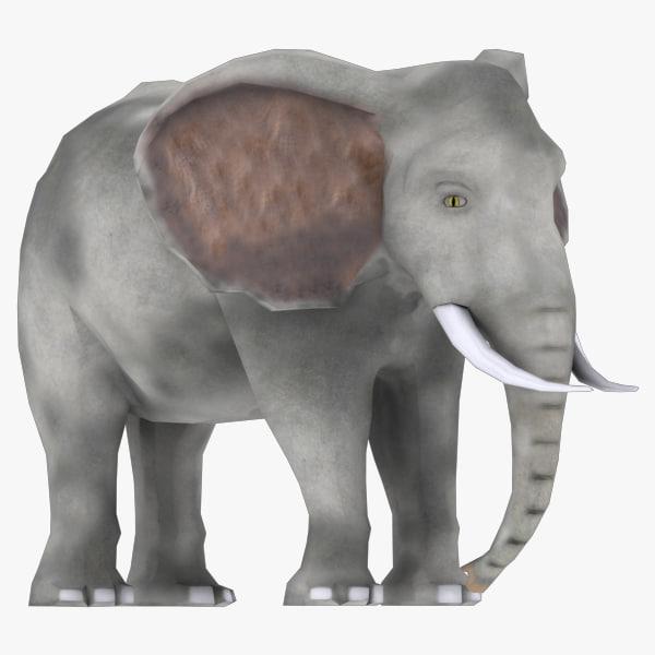 max elephant