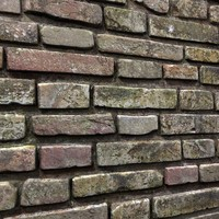 Bricks wall #12