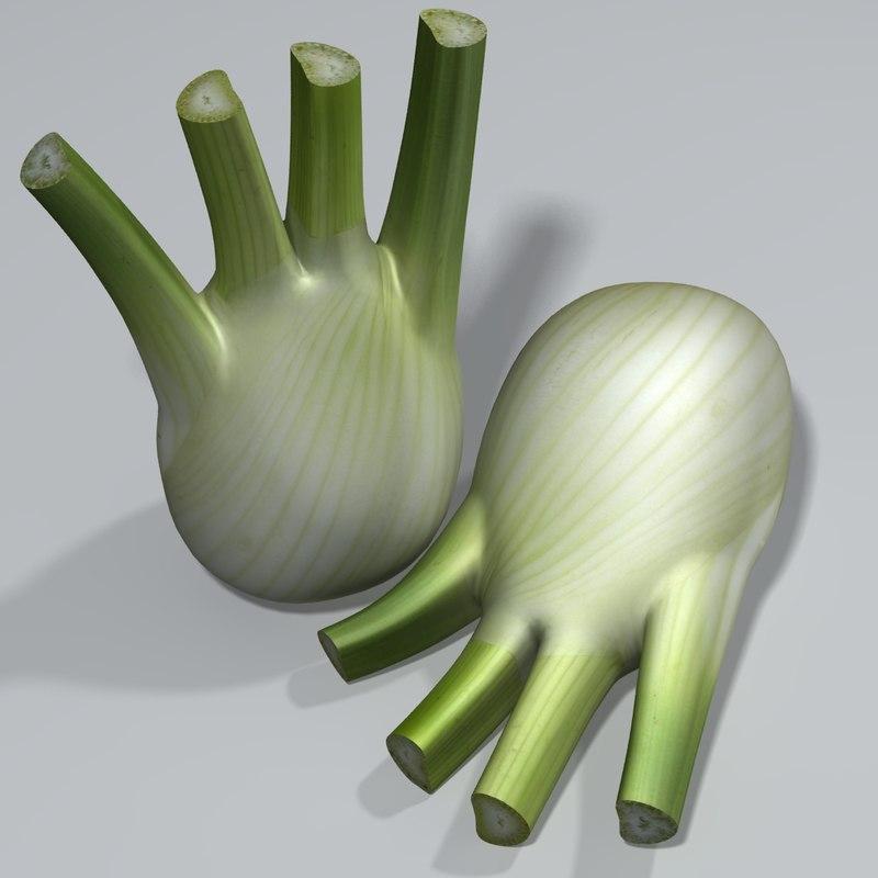 fennel perennial herb 3d model