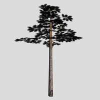 3ds pine