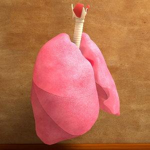 human lung bronchia trachea 3d c4d
