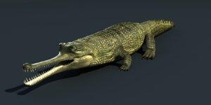 3d model gavial gavialis gangeticus