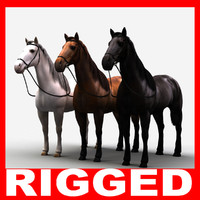 Horse (Rigged) (Three textures)