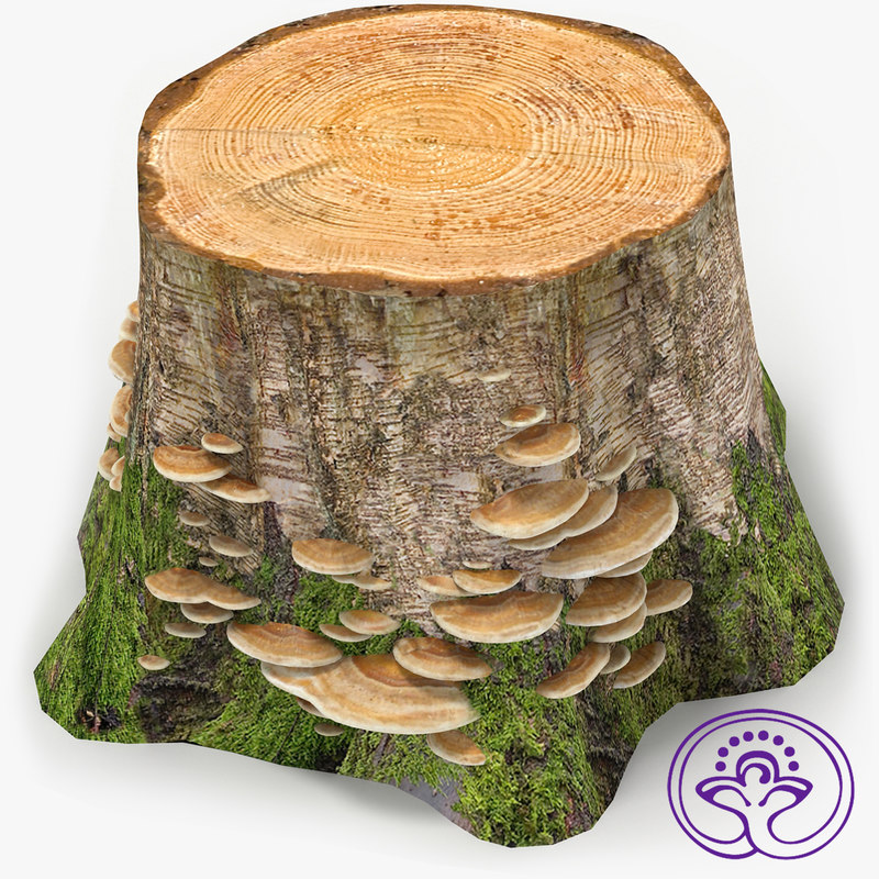 stump mushrooms 3d 3ds