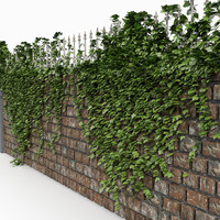 Brick Castle Wall Fence With Ivy