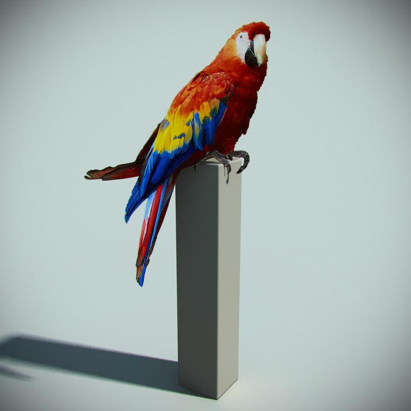 3d model plane parrot