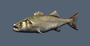 obj fish bass