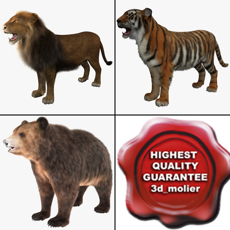 beasts lion tiger 3d model