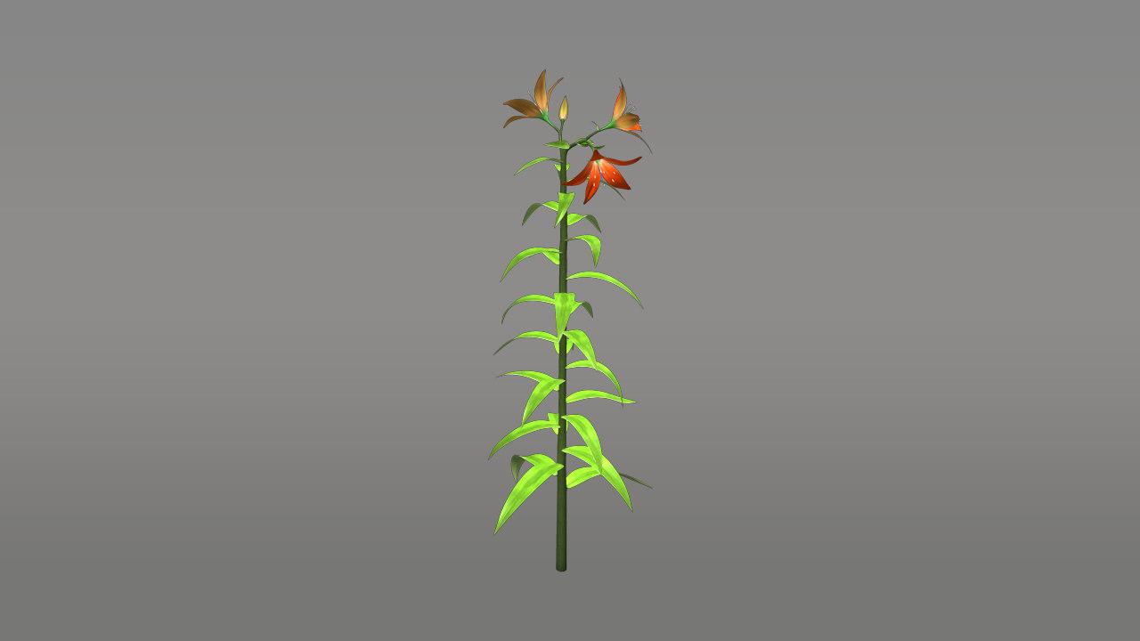 3d double flowering model