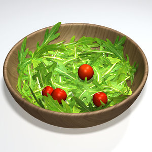 3dsmax salad rocket