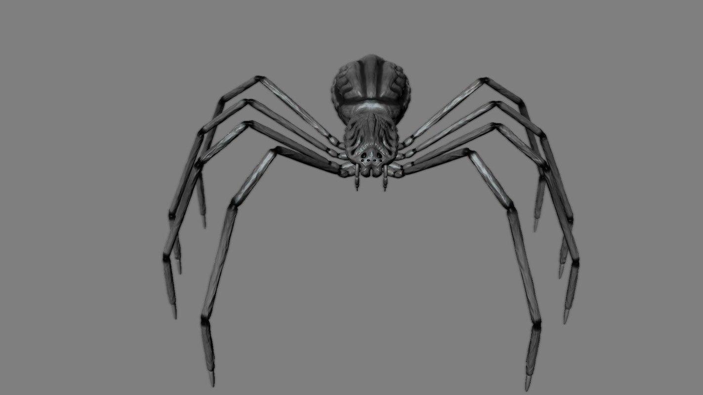 spider obj