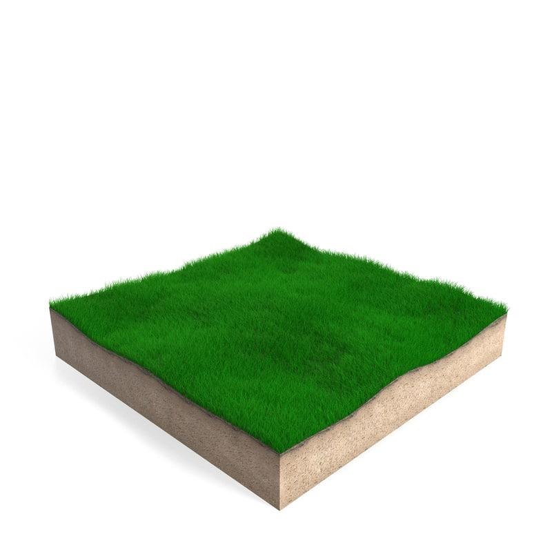 max rectangular grass patch
