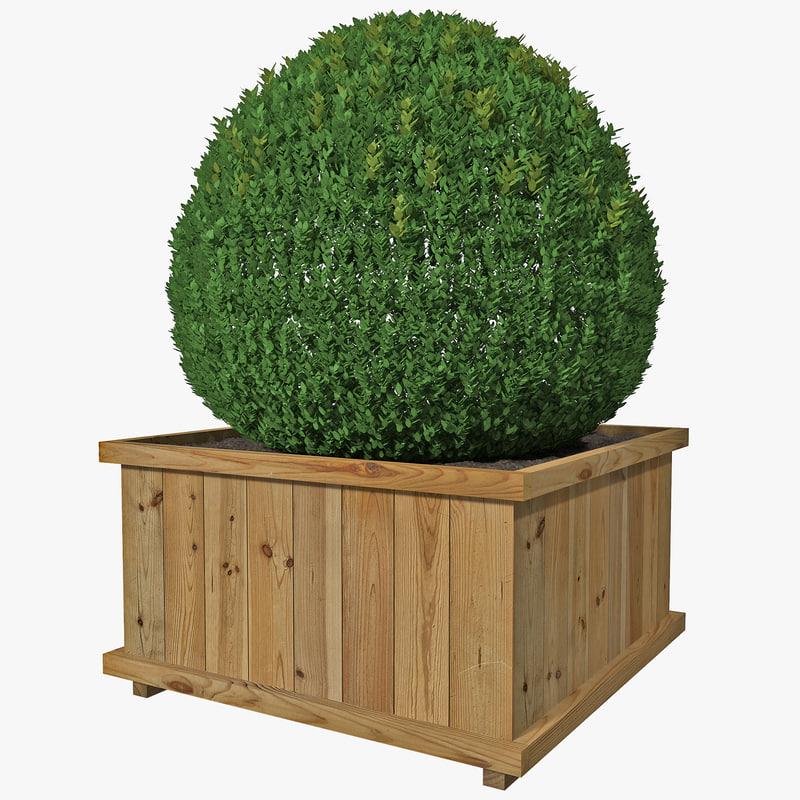 box hedge 3d model