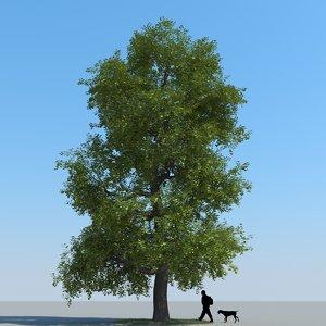 realistic linden tree leaf 3d model