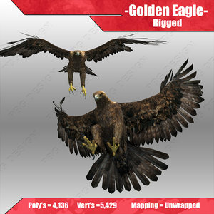 3d golden eagle