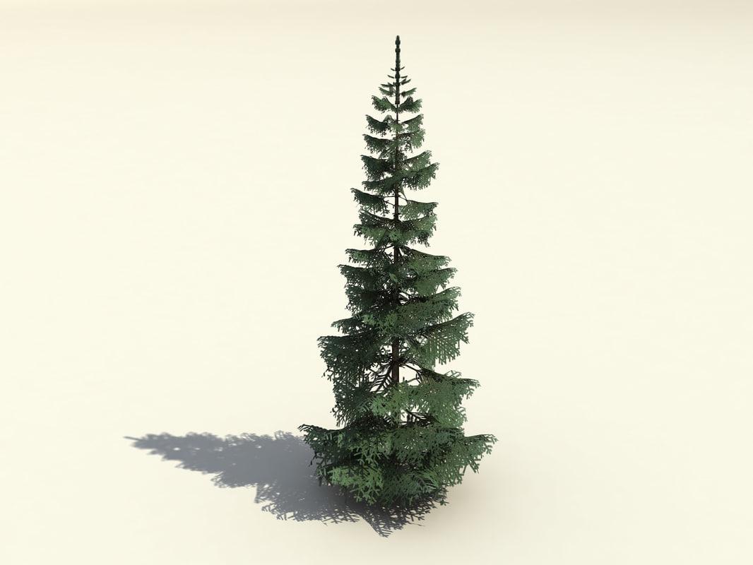 free fir branches trunk 3d model