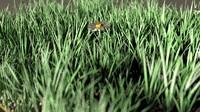 3d daisy meadow