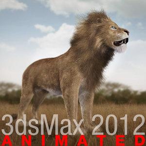 3d model lion fur cat