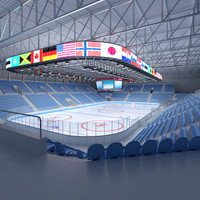 ice hockey arena II