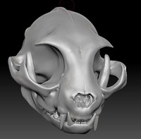 zbrush sculpture cat skull 3d 3ds