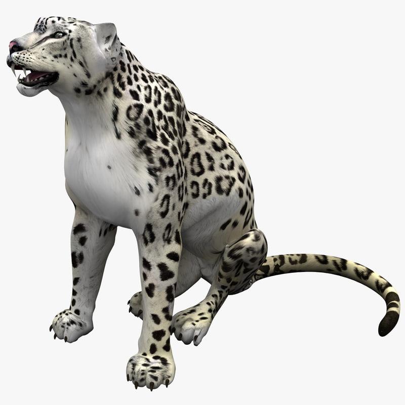 snow leopard pose 2 max