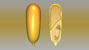 3d model monocotyledonous seed