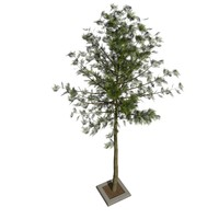 max tree m-01