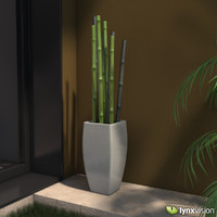 Plantpot with Bamboo Canes