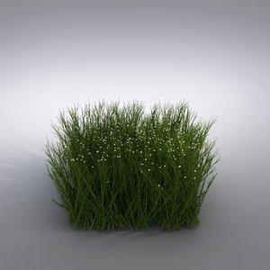 3d max ornamental grass