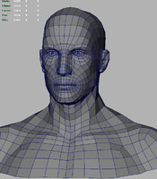 3d model of male bust based