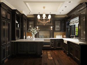 3d model kitchen downsview