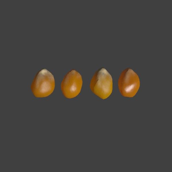 3d popcorn kernels model