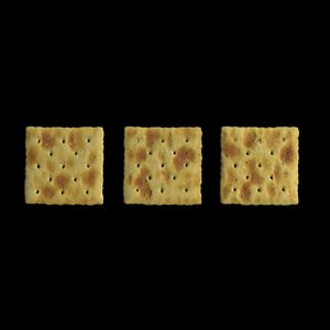 blend saltine crackers salt