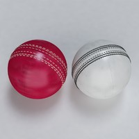 3ds max cricket ball standard warn
